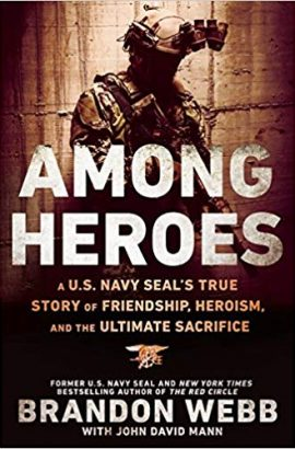 Among Heroes by Brandon Web and John David Mann